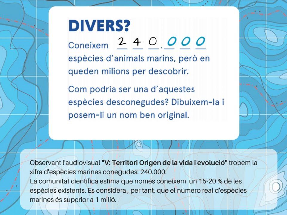 Pissarra Divers
